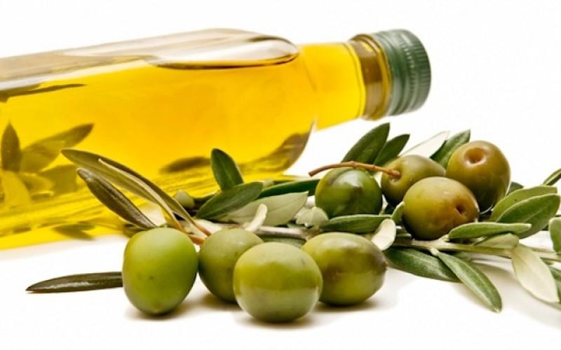 Olive oil good for hair?